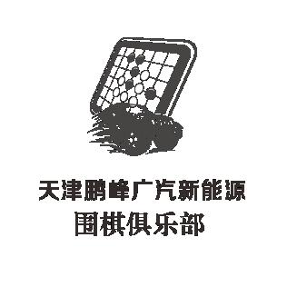天津鹏峰广汽新能源围棋俱乐部